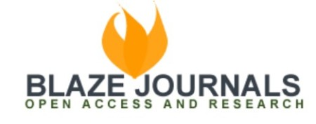 Blaze Journals